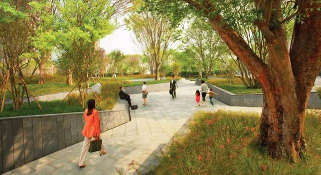 台湾 · 城市榉树花园