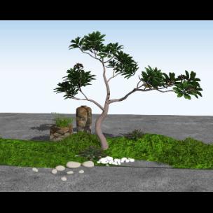 中式小景观绿植树石头假山鹅卵石组合