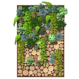 植物景观墙 绿植墙 植物