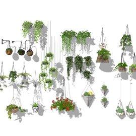 吊篮 绿萝 盆栽 花盆 绿植 多肉组合
