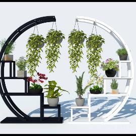 花架 盆栽 植物