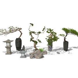 盆景盆栽组合