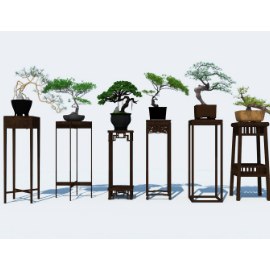 中式盆栽组合