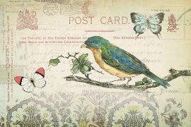 欧式花鸟装饰画包装纸