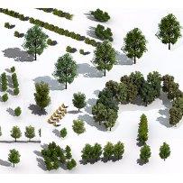 树木绿植鸟瞰俯视素材