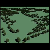 树木树林鸟瞰俯视素材