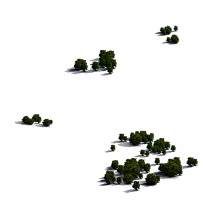 树丛树木植物鸟瞰俯视素材