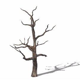 枯树树枝su模型