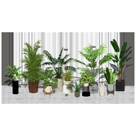 现代绿植盆栽 植物su模型