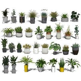 现代盆栽 绿植 植物 花瓶su模型