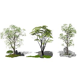 新中式景观小品 枯山水 乔木 景观树SU模型
