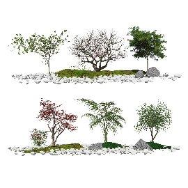 现代景观树 乔木 树木 景观小品 鹅卵石 枯枝su模型