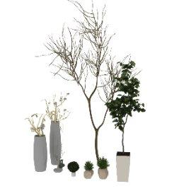 植物干支花瓶